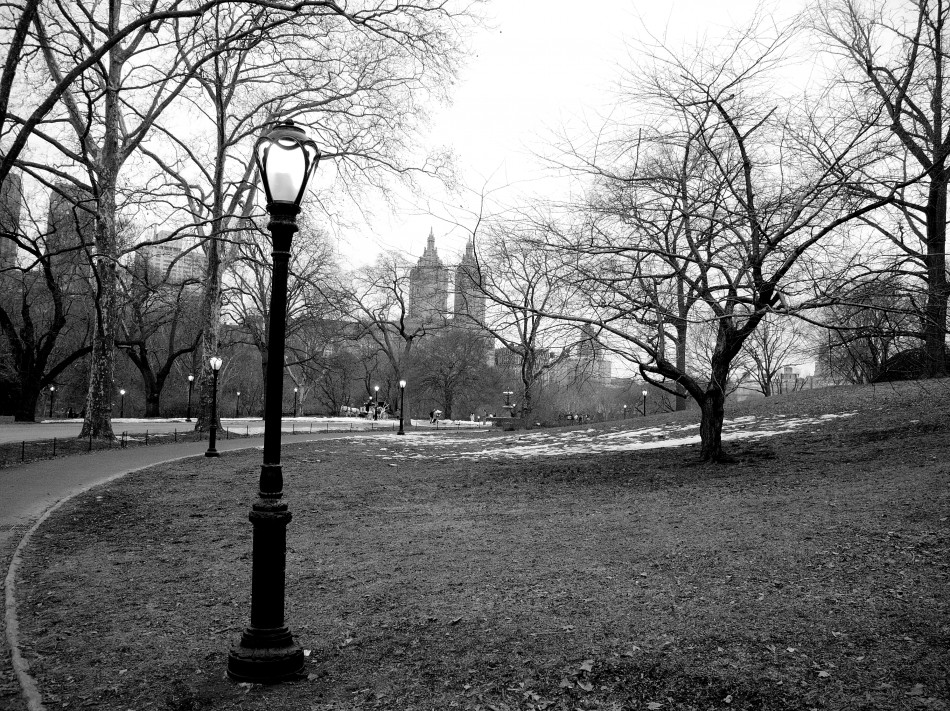 Central Park Path-BW