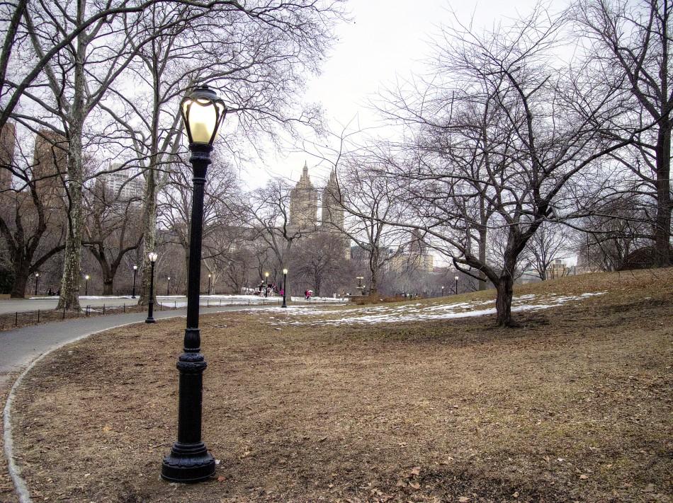 Central Park Path-Color