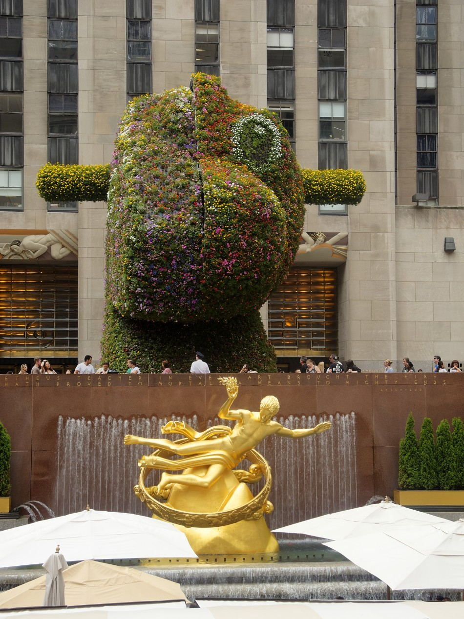 The View at Rockefeller Center