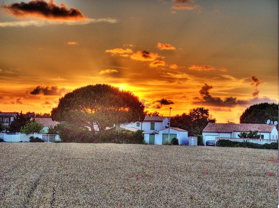 Ars-en-Re Sunset