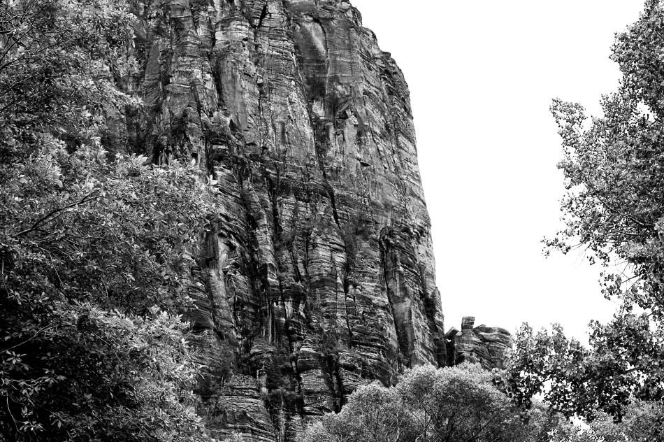 Zion Rock Face