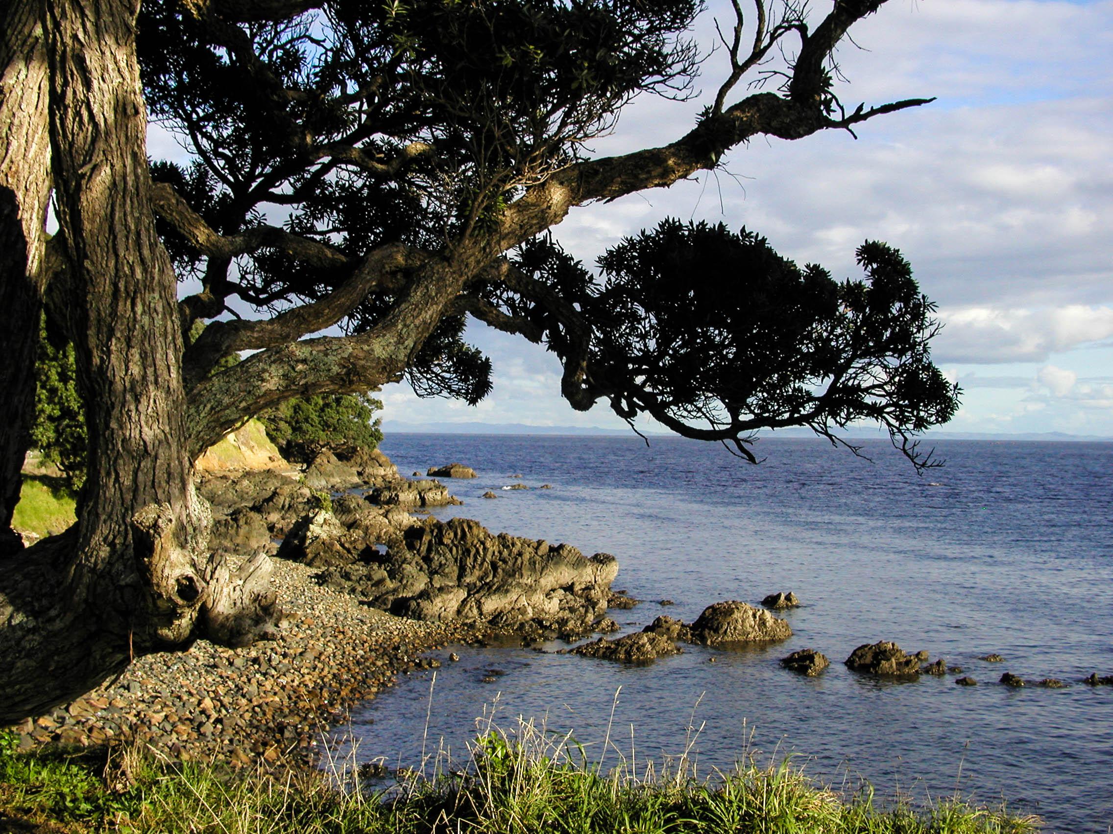 View from the Coromandel Peninsula
