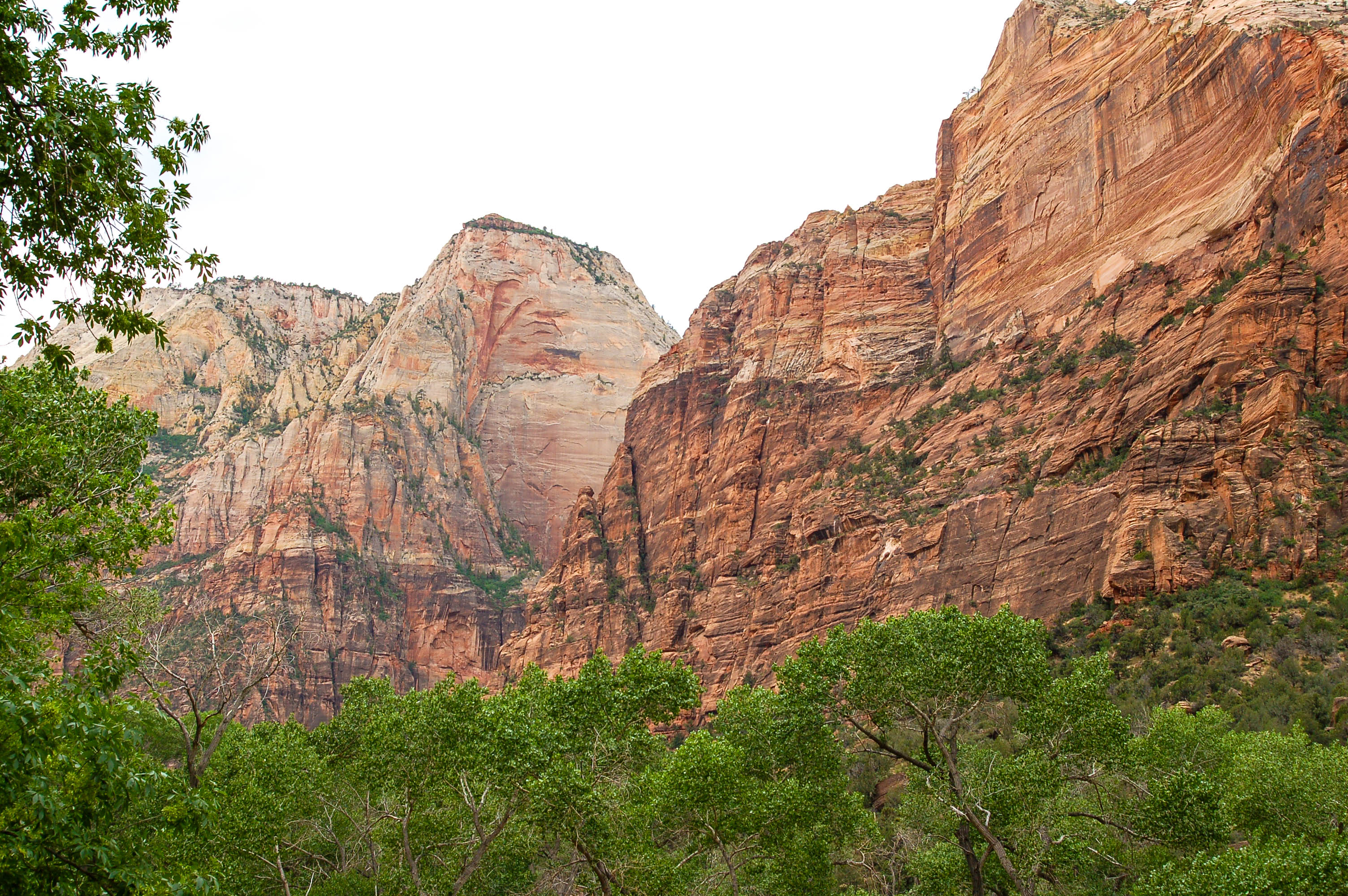 Zion National Park Rockface