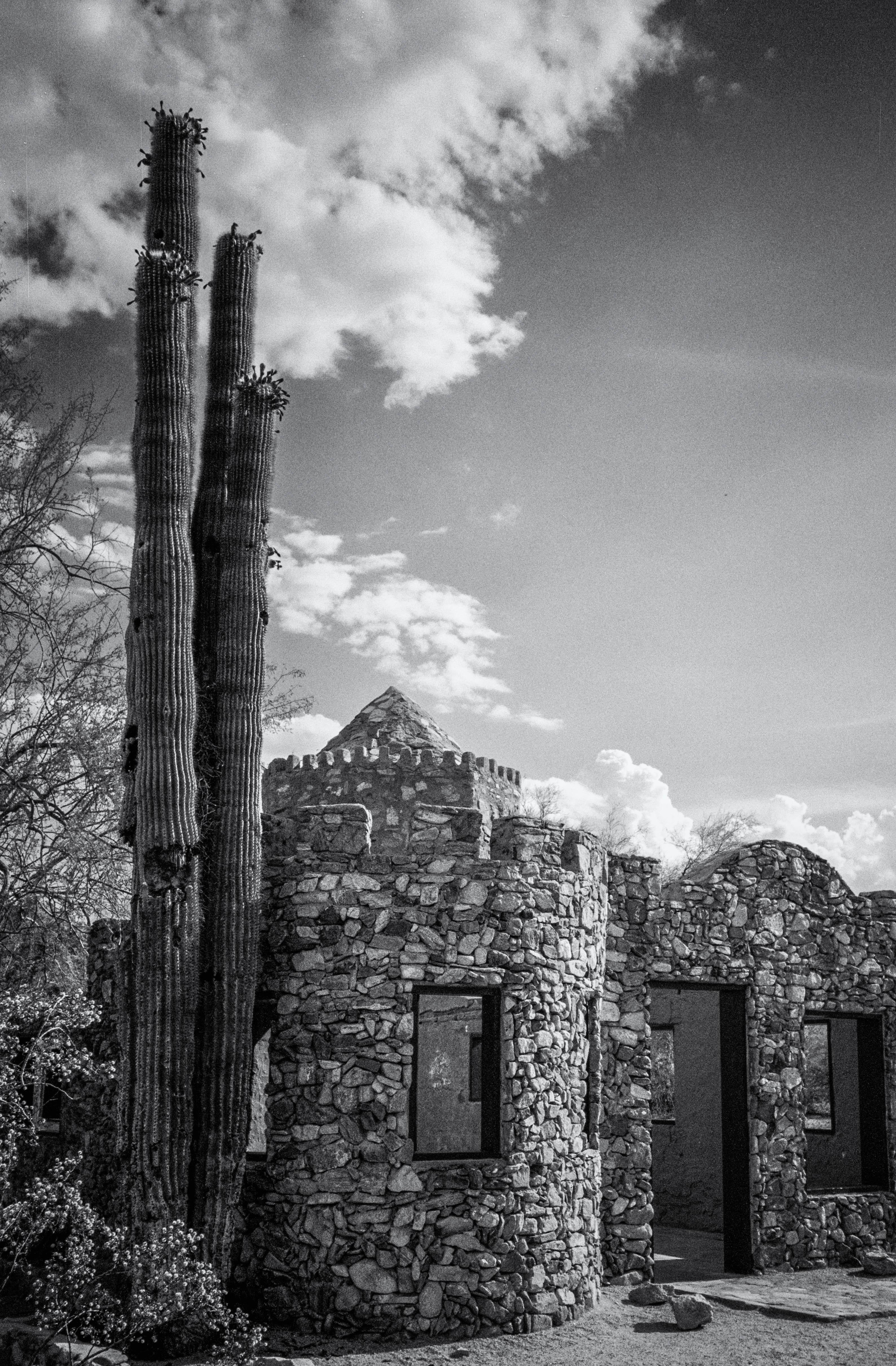 Desert Castle Ruin